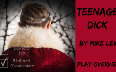 Teenage Dick by Mike Lew – PLAY OVERVIEW